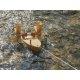 Kraul - 1000 - Forelle, Schiffsbausatz